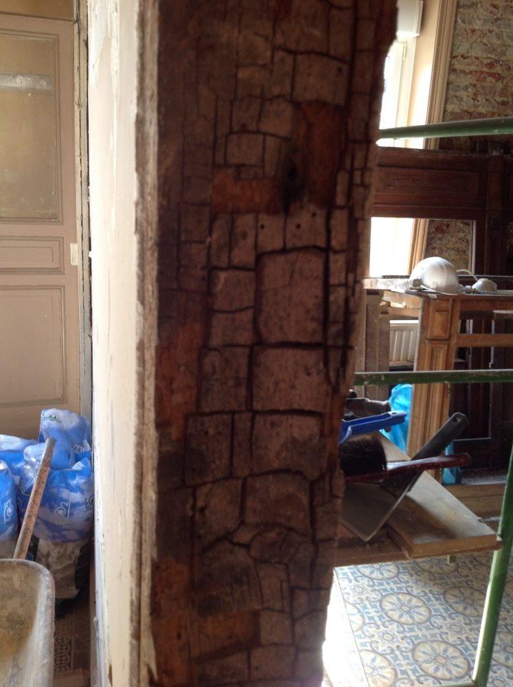 Pourriture cubique du bois